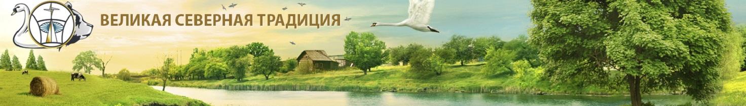 ШЕРСТЕННИКОВ Н.И. Великая Северная Традиция. Официальный сайт. Все права защищены.